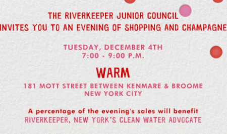 Riverkeeper Junior Council Shopping and Champagne at WARM