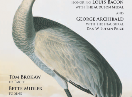 The National Audubon Society Gala Dinner