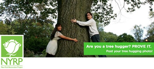 Are you a tree hugger?