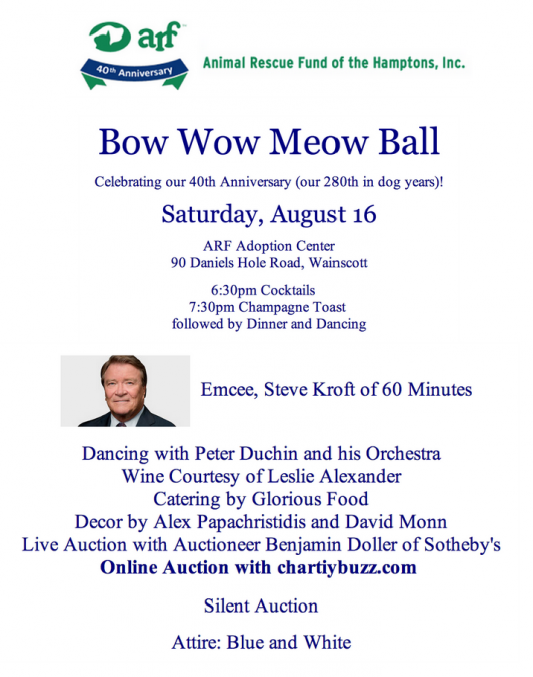 what to wear bow wow meow ball