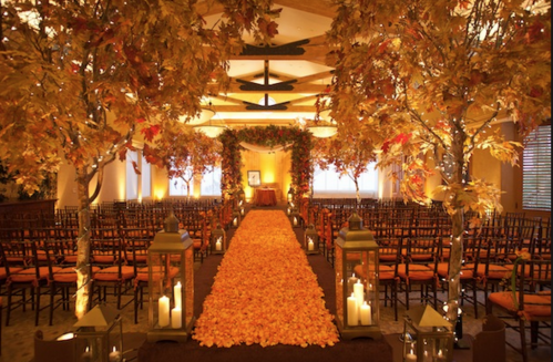 Fall weddings junglespirit Choice Image