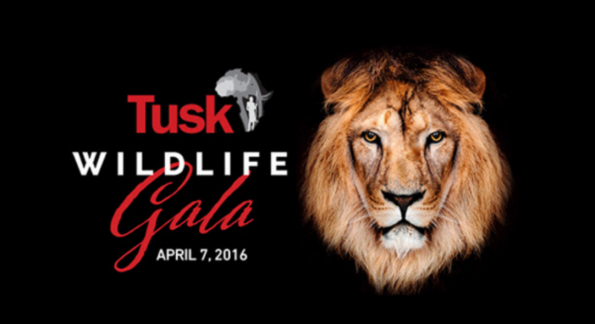 What to wear TUSK Gala